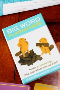 Big Words Flashcards
